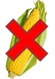 no corn fenugreek supplement