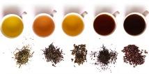 caffeine in real teas