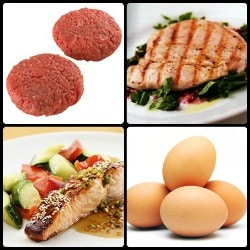 biological value of protein