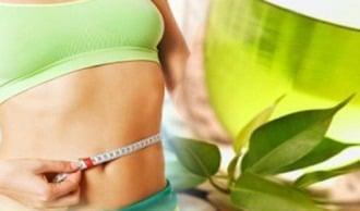 green tea burns calories
