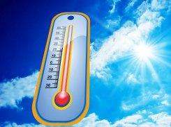 temperatures and sport