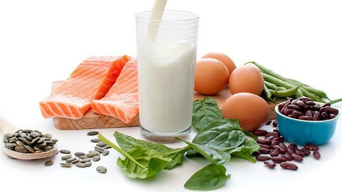 what does protein do for muscles