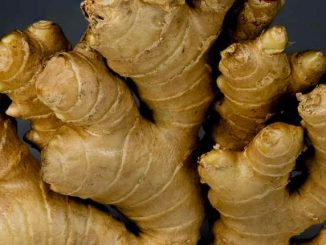 ginger herb for constipation