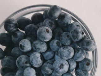blueberries for diarrhea