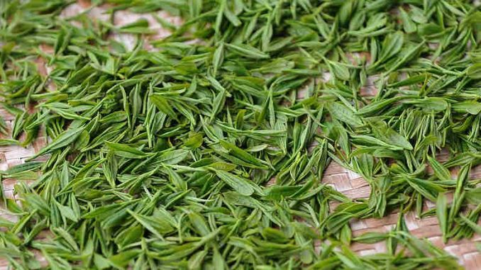 green tea for acid reflux