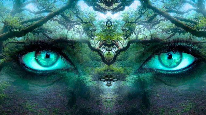visualizate your future