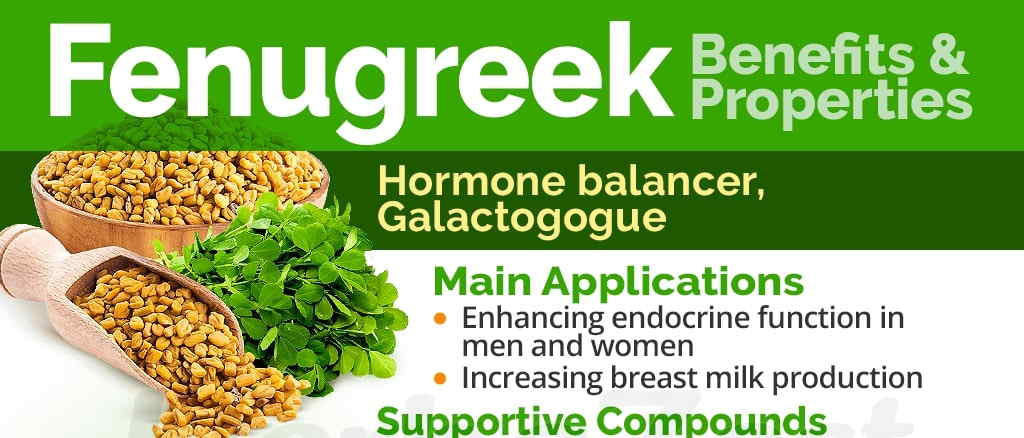 fenugreek benefits